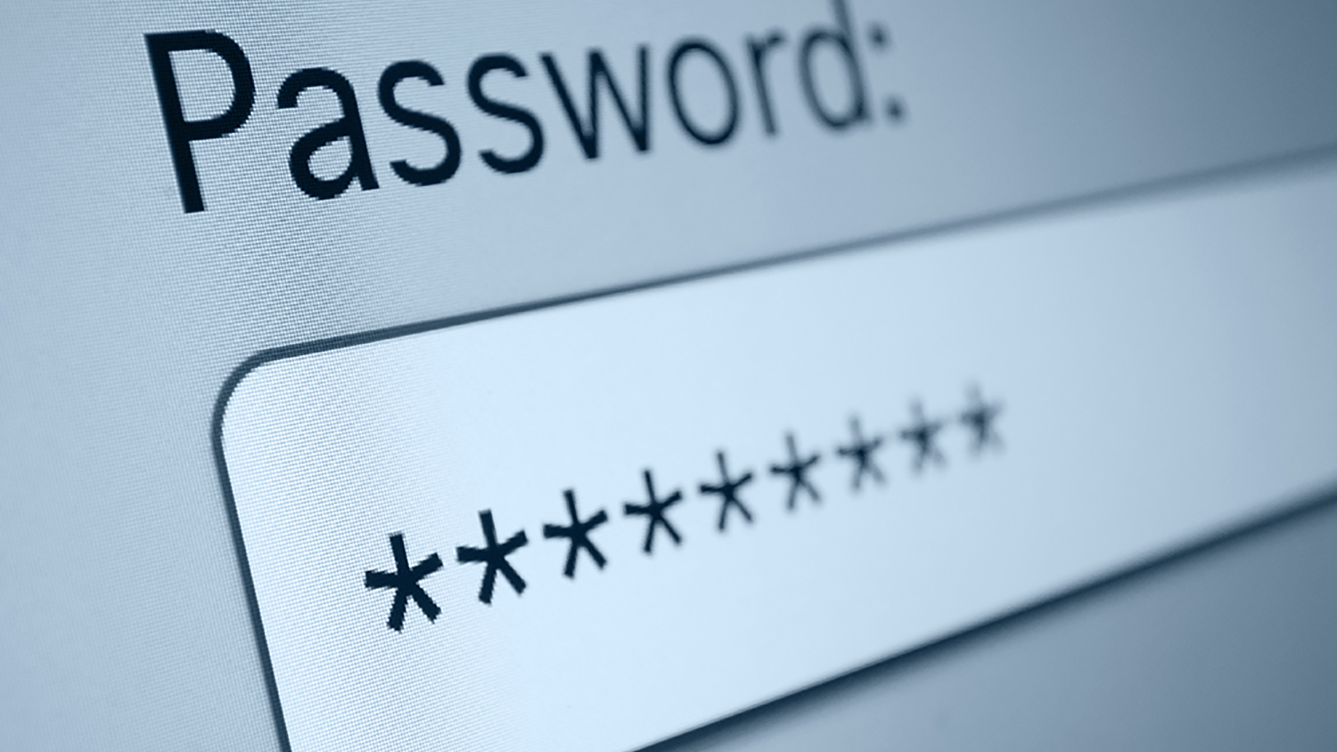 Password Management Guide